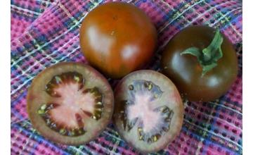 Tomato Black Russian Tray