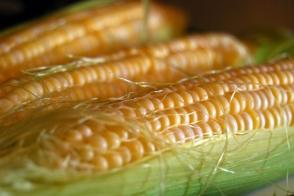 Corn Sweet Tray