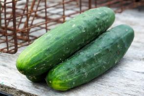 Cucumber Lebanese Tray