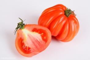 Tomato Rouge De Marmande Tray