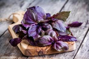 Basil Purple Tray