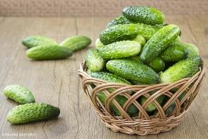 Cucumber Patio Snacker Tray